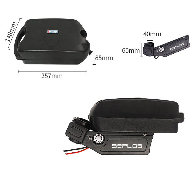 Frog Electric Bike Rechargeable Lithium Ion Battery Seplos 24v 36v 48v 21ah 15ah With BMS